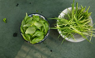 Basil and chives.