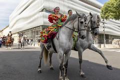 Défilé d'El Rocío - 6 (Xtian du Gard) Tags: xtiandugard défilédelrocío chevaux horses andalouses cavalières nîmes féria pentecôte 2018 gard france romanité musée