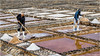 Collecting Sal (Salt) (Fermat48) Tags: fuerteventura canaryislands sal salt salinasdelcarmen salary caletadefuste