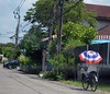 patriotic umbrella (the foreign photographer - ฝรั่งถ่) Tags: girl ridiing bicycle patriotic umbrella red white blue colors out street bangkhen bangkok thailand nikon
