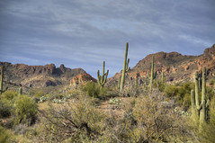 Superstition Mtn 40 (Largeguy1) Tags: approved superstition mtn landscape clouds desert canon 5d mark iii
