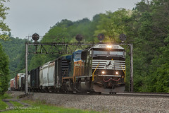 NS 10N @ Lilly, PA (Darryl Rule's Photography) Tags: 1943 2018 amtrak clouds cloudy diesel diesels emd freight freightcar freighttrain freighttrains ge helpers may middledivision mixedfreight ns norfolksouthern ocs passenger passengertrain railroad railroads sd70ace spiritoftheunionpacific spring train trains up unionpacific westslope