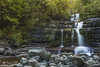 Liffey Falls (R. Francis) Tags: liffeyfalls liffeyriver waterfall water ryanfrancis ryanfrancisphotography tasmania meander meandervalley