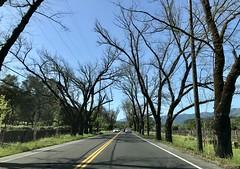 #SundayDrive to #NapaValley #California (Σταύρος) Tags: sthelena sundaydrive weekendgetaway winecountry qualitytime sunnyday napa napavalley