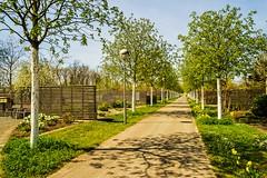 The Tulln Gartencenter (a7m2) Tags: natur garten diegartentulln loweraustria fachmesse flora ökololgie nopesticides umweltmanagement gärtner pflanzen blumen bäume