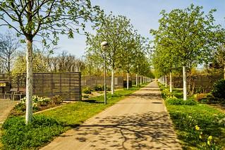The Tulln Gartencenter