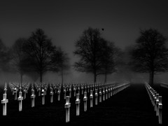 9,387 Graves II (The Black Fury) Tags: cemetery omahabeach normandie normandy collevillesurmer fog tree lowkeyblack white bw crow