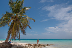 """""""Saona Island"""" (Le Vieux Geek) Tags: canoneos70d efs1755mmf28isusm facebook flickr puntacana caraïbes mer nature paradis paysage plage repdom"""