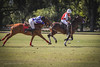 Polo en Lobos (guspaulino1) Tags: caballos polo deporte campo velocidad juegos nikon8020028 nikond750 buenosaires provinciadebuenosaires lobos