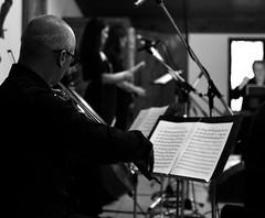 Violinista - Serie Partituras (Zahomi) Tags: música caminosdelvino vendimia mendoza godoycruz