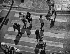 Zebra Crossing - A Bird Eye's View (gunman47) Tags: 2017 asia asian b bw bangkok buddha christmas december east erawan mono monochrome sepia shrine siam south thai thailand w black crossing pedestrian people photography street tourist white zebra krungthepmahanakhon