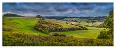 Upper Austin Lodge valley seen from the end of Hartnips Wood, Eynsford, Kent. (Richard Murrin Art) Tags: upperaustinlodgevalleyseenfromtheendofhartnipswood eynsford kent england richard murrin art photography canon 5d landscape travel images building cool