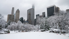 Snowfall over NYC in April (johnsdigitaldreams.com) Tags: newyork johnsdigitaldreamscom sonyalpha sony a7rm2 bigapple johnchandler nyc