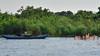 negombo rivière et magroves (ver-20100) Tags: asia srilanka mangrove nature rivière river nikon nikond750