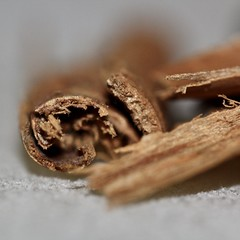 Cinnamon and Salt (janano2010) Tags: macromondayscondiments macro cinnamon salt herbsandspices condiments