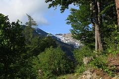 Mex (bulbocode909) Tags: valais suisse mex montagnes nature forêts arbres printemps nuages vert bleu paysages troncs neige