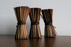 Scented sticks (Alfredo Liverani) Tags: odcdailychallenge odc daily challenge three canong5x canon g5x pointandshoot point shoot ps flickrdigital flickr digital camera cameras