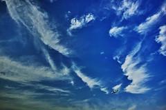 20180624_DP0Q0567 (NAMARA EXPRESS) Tags: landscape nature sky cloud plane airplane jetplane aeroplane daytime summer fine outdoor color blue foveonclassicblue toyonaka osaka japan spp spp653 foveon x3 sigma dp0 quattro wide ultrawide superwide namaraexp