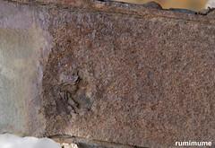 Dent (rumimume) Tags: potd rumimume 2018 niagara ontario canada photo canon 80d sigma rust metal bridge close closeup industrial dent