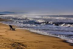 w.t. (robertoburchi1) Tags: seascape sea landscape paesaggi mare acqua persone conceptual colori