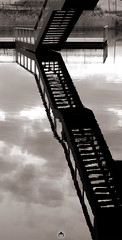 Monter en Eau (ANOZER Photograffist) Tags: paris france stair staircase escalier water eau reflection reflet reflect graphic bnw sepia clouds perspective architecture minimalism vertical anozer anozercreation archi urban