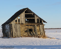 2018_DP_Week09_C_Abandoned House c (SMD Pics) Tags: dogwood2018 dogwoodweek09 abandoned house oldhouse forsaken