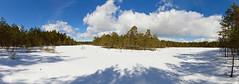 Stora Bladträsk ja Lilla Bladträsk - Siuntio (mustohe) Tags: 2018 finland panorama winter talvi maisema landscape canon hugin pilvet clouds metsä forest lumi snow siuntio