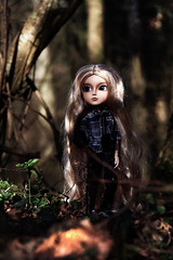 Alldrig (Naekolyset) Tags: pullip pullipdoll taeyang taeyangdoll doll dolls toy toys junplanning taeyangcavalie blonde blondhair longhair longhairedboy nature forest portrait bokeh outside travel lands spring sun light natural