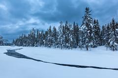 Winter (Lars Øverbø) Tags: winter evening river forest sky snow ice water frost maura nannestad bjerke norge norway canoneos5dmarkii canonef1635mmf4lisusm leendgrad