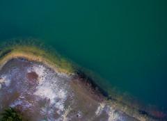 Division (Noel Alvarez1) Tags: p3s aerial photography drone nature lake nj usa spring