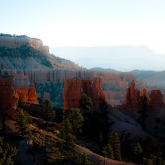 In Canyons 216 (noahbw) Tags: brycecanyon d5000 nikon utah autumn canyon desert erosion hills hoodoos landscape light mist misty natural noahbw quiet rock shadow square still stillness stone sunlight incanyons