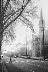 Crossing Over [Explore 2018-04-04]Thank you to everyone who viewed my artwork and faved or wrote me such encouraging words! (Bokehneer) Tags: church street urban road crosswalk cross steeple vanishingpoint tree avenue foggy weather misty atmospheric bw monochromatic losangeles california