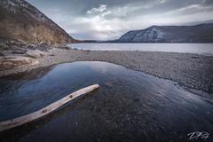 Surreal Hudson River (Dan NYNJ) Tags: newyork nikon river water driftwood shore mountain hudsonriver coldsprings stormkingmountain surreal