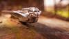 Take A Little Sunshine (Wayne Stadler Photography) Tags: abandoned preserved junkyard georgia classic automotive derelict overgrown vehiclesrust rusty retro vintage oldcarcity rustographer rustography white