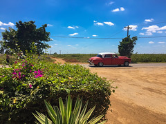 American old classic zooming by the Central Road in route to Havana (lezumbalaberenjena) Tags: manacas manaca cuba 2018 lezumbalaberenjena trip viaje family familia sabino hernandez vintage car maquina máquina máquinas almendron classic