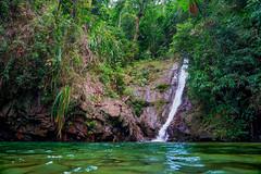 Papawyan Falls (Daniel Zwierzchowski) Tags: palawan philippines river waterfalls water waterfall natgeo nature natgeotravel asia sony sonyalpha a7rii a7rmk2 sel24105g outdoor jungle paradise ng ngc