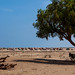 Refugees somali huts, Awdal region, Lughaya, Somaliland