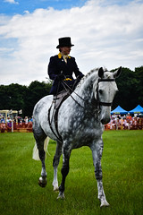 Concourse d'Elegance (littlestschnauzer) Tags: horse dapple grey concourse delegance elegant stride honley show beauty huddersfield rural country uk yorkshire equine 2018 june competitor