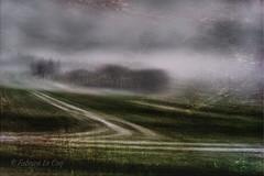 Beugler de désespoir (Fabrice Le Coq) Tags: vert flou ciel nuages gris brume route arbre pelouse herbe champs paysage photographie artphoto fabricelecoq