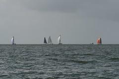 LOX_3963 (Lox Pix) Tags: australia queensland brisbanetogladstone yachtrace catamaran trimaran 2018 bossracing multihull loxpix moretonbay shorncliffe cabbagetreecreek rudder aground sailing loxworx