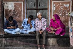 "A Jaipur Street Scene (El-Branden Brazil) Tags: jaipur asia street ""gangaur festival"" festival india indian asian ""south asia"" rajasthan hindu hinduism"