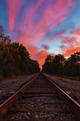 """Brannon Crossing"" (the_lowe_life) Tags: sky goldenhour rural explore travel dusk tracks railroad lexington photography color sunset kentuckykicksass kentucky 18140 d7200 nikon nikkor"