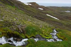 Day 4: Towards Breiðuskarðahnúkur (Gregor  Samsa) Tags: iceland icelandic north deepnorth trek trekking track tracking backpacking trip journey adventure outdoors outdoor nature naturereserve scenic scenery walk walking hike hiking path footpath trail exploration summer hornstrandir