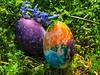 Happy Easter (nenos_79) Tags: catholic macro nature iphonephotography великден coloredeggs plovdiv bulgaria happyeaster