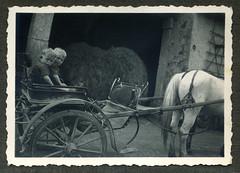 i gemelli sul birroccio a Gambellara - maggio 1937 (dindolina) Tags: photo fotografia blackandwhite bw biancoenero monochrome monocromo vintage italy italia veneto vicenza gambellara cavallo horse gemelli twins 1937 1930s annitrenta thirties family famiglia history storia vignato