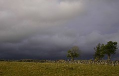 April Skies (flxnn) Tags: cloud clouds sky skies weather grey landscape rural europe paysages field grass grassland walls wall trees ireland sligo landschaft farmland amateur beauty color colour stillness