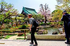 At Garden of Hase Temple, Kamakura : 鎌倉・長谷寺 (Dakiny) Tags: 2018 spring april japan kanagawa kamakura hase city street landscape temple hasetemple garden pond people d750 nikonclubit 日本 神奈川 鎌倉
