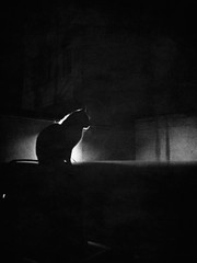 06_Street_Juin_2018-7 (photo_de_rue_mosto) Tags: bnwphotography blackandwhite bnw noiretblanc monochrome olympus