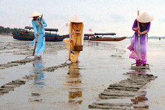 Shell raking 耙螺 (MelindaChan ^..^) Tags: guangxi china 廣西 東興 澫尾島 shell raking 耙螺 light play painting beach fishing fisherman tradition life chanmelmel mel melinda melindachan