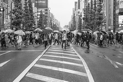 WHEN IT RAIN IN TOKYO (ajpscs) Tags: ajpscs japan nippon 日本 japanese 東京 tokyo city people ニコン nikon d750 tokyostreetphotography streetphotography street seasonchange spring haru はる 春 2018 shitamachi night nightshot tokyonight nightphotography citylights tokyoinsomnia nightview monochromatic grayscale monokuro blackwhite blkwht bw blancoynegro urbannight blackandwhite monochrome alley othersideoftokyo strangers walksoflife omise 店 urban attheendoftheday urbanalley tokyoscene anotherday whenitrainintokyo